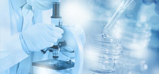 纤维分子化学研究