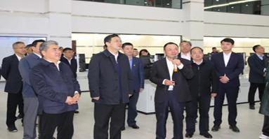 江苏省委常委、统战部部长杨岳调研盛虹石化